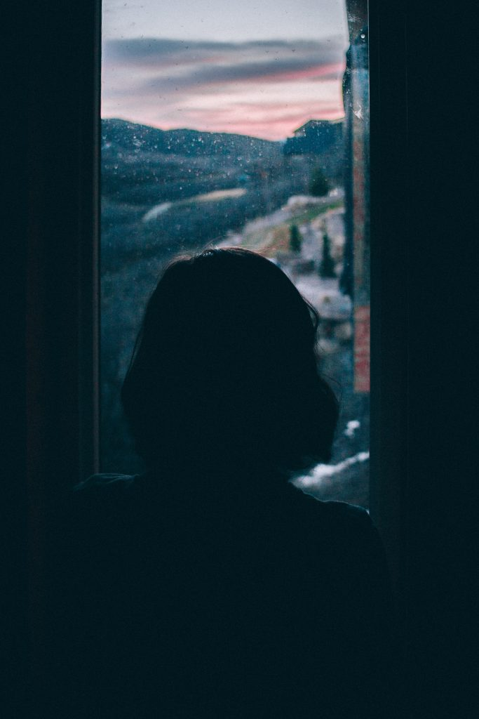 women's silhouette facing window looking at countryside